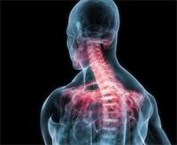 Bone-ing Pains