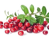 Berry Promising!